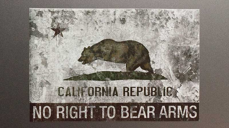 ENDO Apparel No Right To Bear Arms stickers!!!